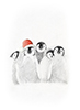 Link to 'Christmas penguin huddle'