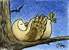 Link to 'Oscar the Owl'